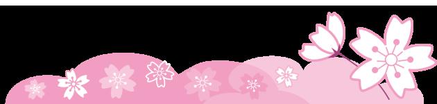 桜の仕切り