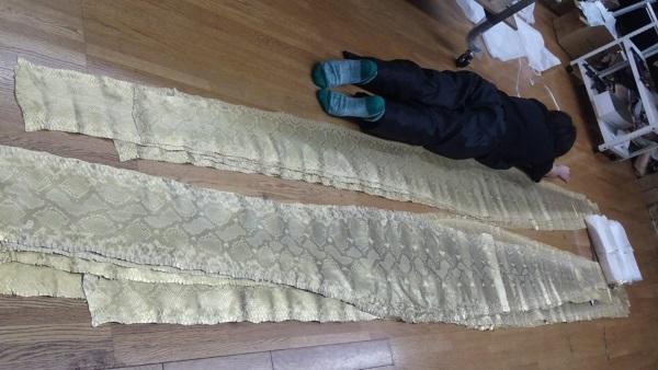 本物の錦蛇革と人間の比較