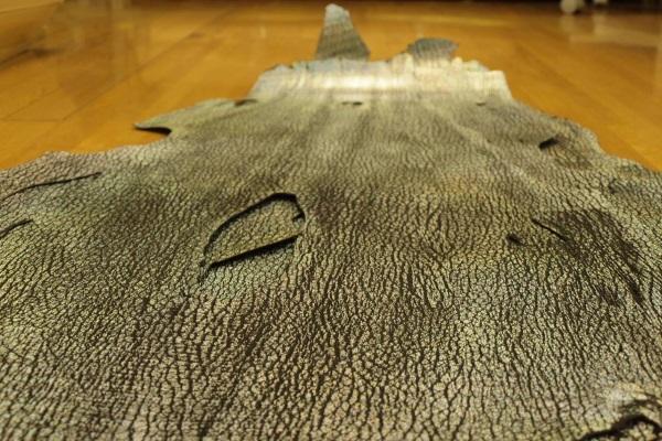 本物の鮫革素材